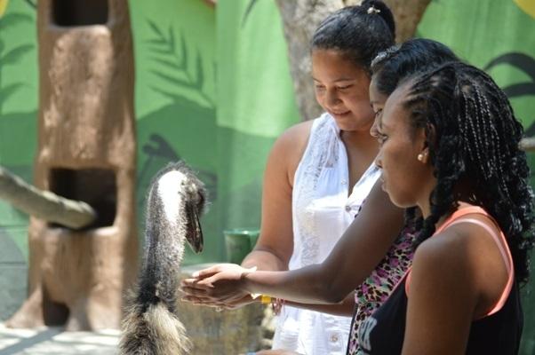 Niños, niñas y adolescentes víctimas de abuso y explotación sexual en Cartagena de Indias visitan por primera vez un zoológico