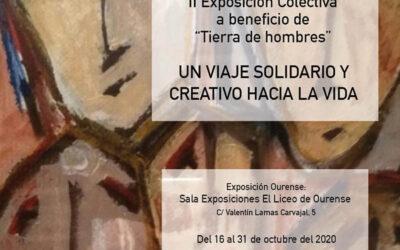 """II Exposición Solidaria """"Unha viaxe solidaria e creativa á vida""""en Ourense"""